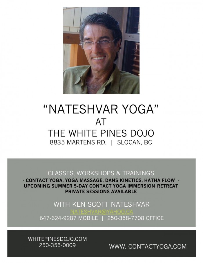 KS WHITE PINES DOJO FLIER 021216